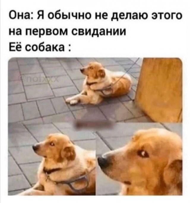 Шутки и мемы про современных девушек (15 фото)