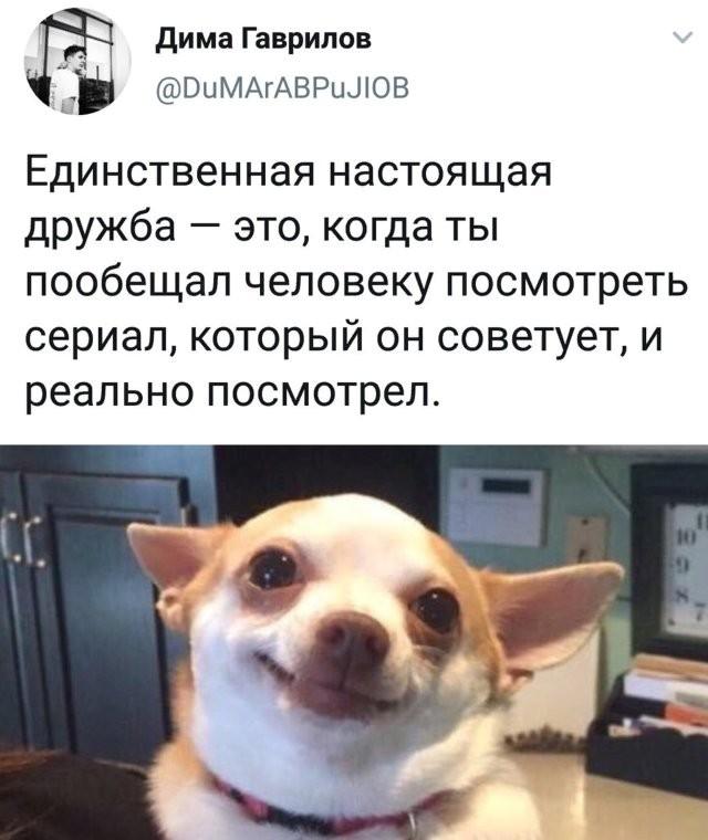 Подборка прикольных фото (66 фото) 30.06.2020