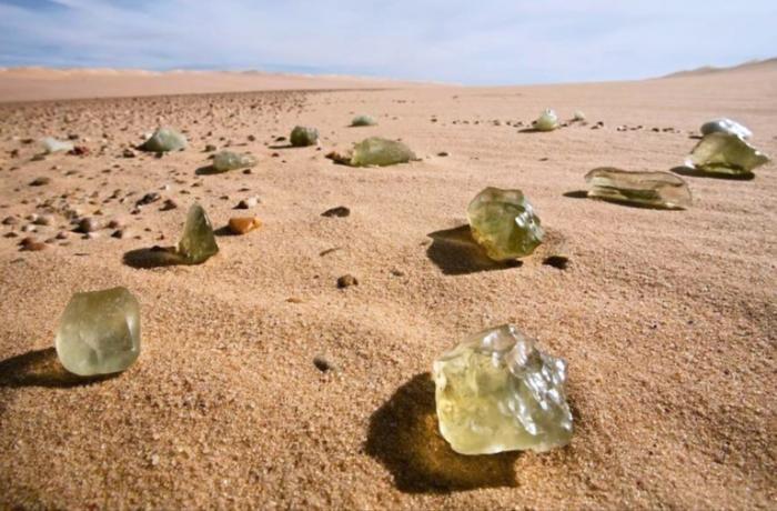 Удивительные жители и находки в пустыне (8 фото)