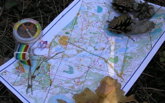 Что должен знать каждый грибник (5 фото)