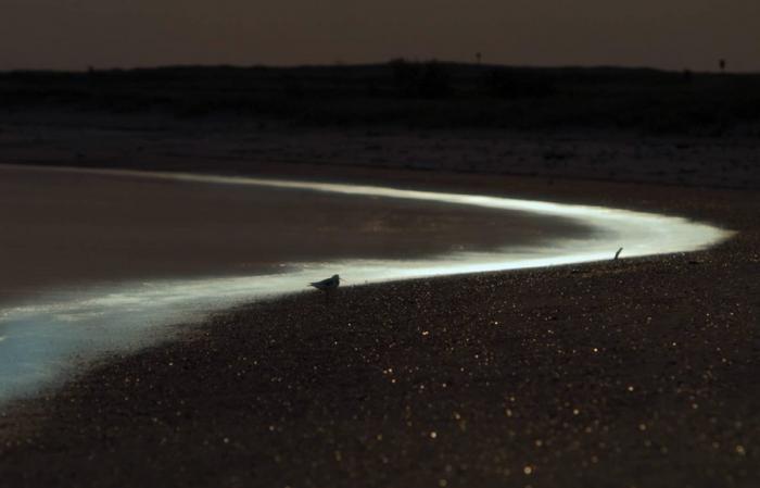 Самые прекрасные заливы мира (10 фото)