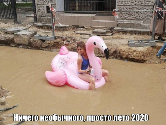 Подборка прикольных фото (62 фото) 03.07.2020