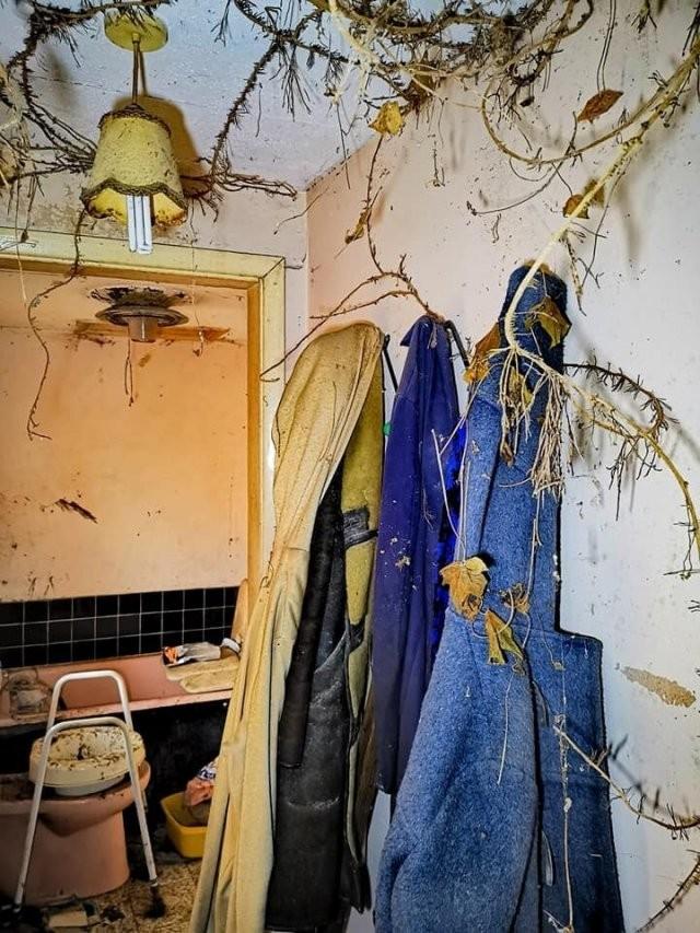 Как выглядит дом, заброшенный почти 20 лет назад (15 фото)