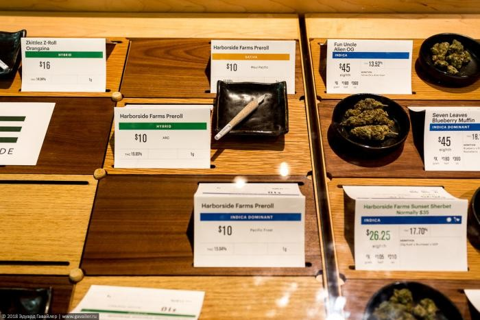 Как выглядит магазин марихуаны в Калифорнии (20 фото)