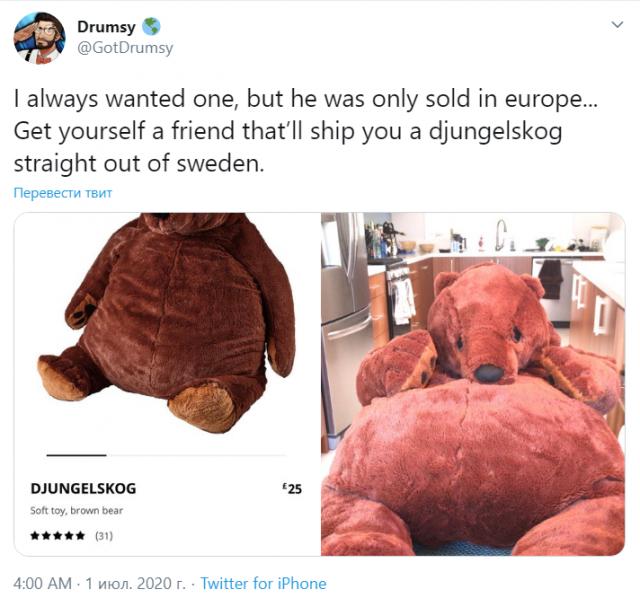 Новый хит сезона: Медведь Дьюнгельског страдающий депрессией (10 фото)