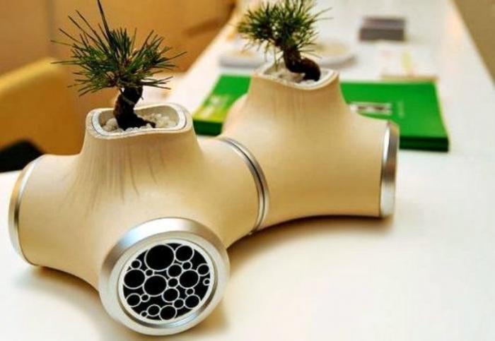 Миниатюрные сады, которые поместятся в ладошке (20 фото)