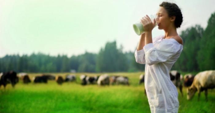 Сколько можно пить молока без вреда для здоровья (4 фото)