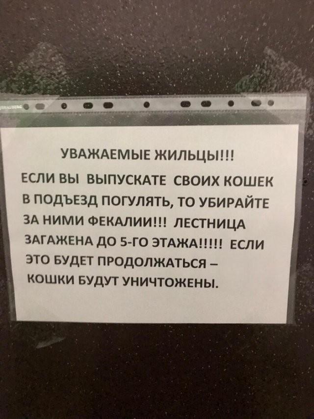 """Есть такая профессия - """"человек-сосед"""" (16 фото)"""