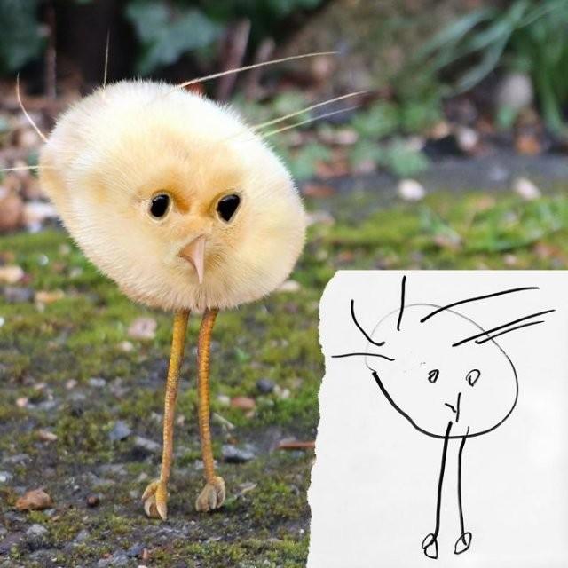 Как выглядели бы животные, созданные по детским рисунком (15 фото)