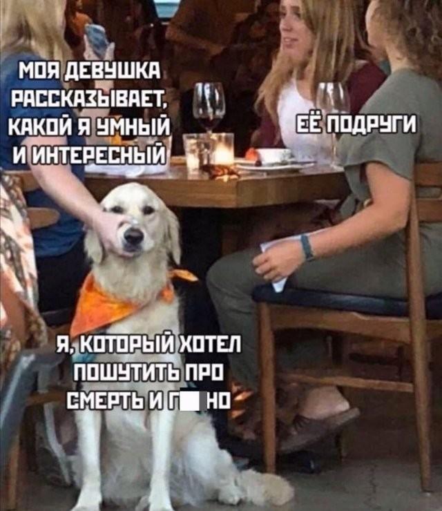 Шутки про современных девушек (14 фото)