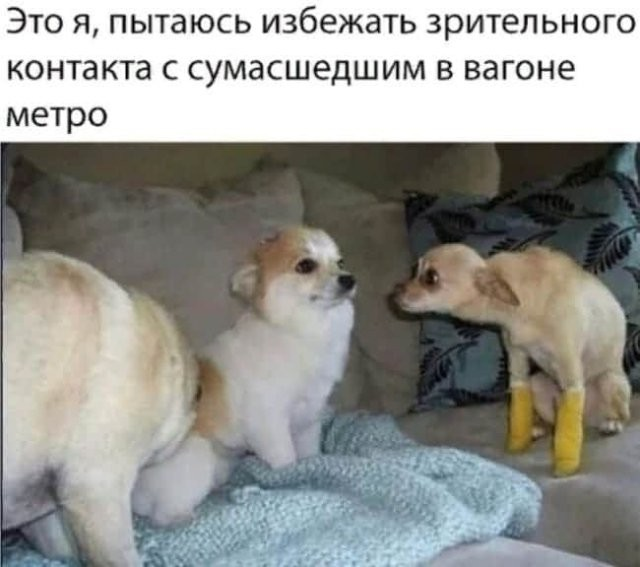 Шутки и мемы из Сети (10 фото)