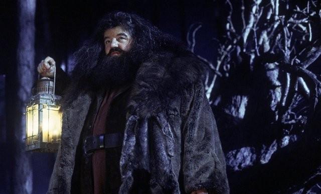 Гарри Поттеру - 40 лет! Мальчик, который выжил и популярным (10 фото)