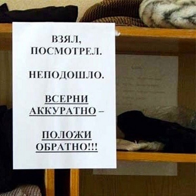 Ошибки странности в словах и предложениях, со смехом (10 фото)