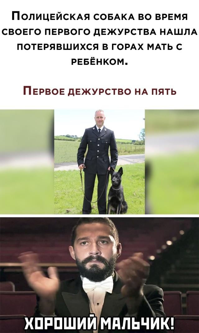 Подборка прикольных фото (62 фото) 11.08.2020