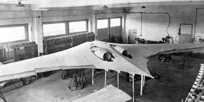 Первый в мире самолет-невидимка: секретный проект Рейха (7 фото)