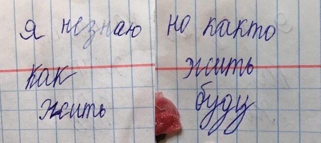Записи из личных дневников детства (10 фото)