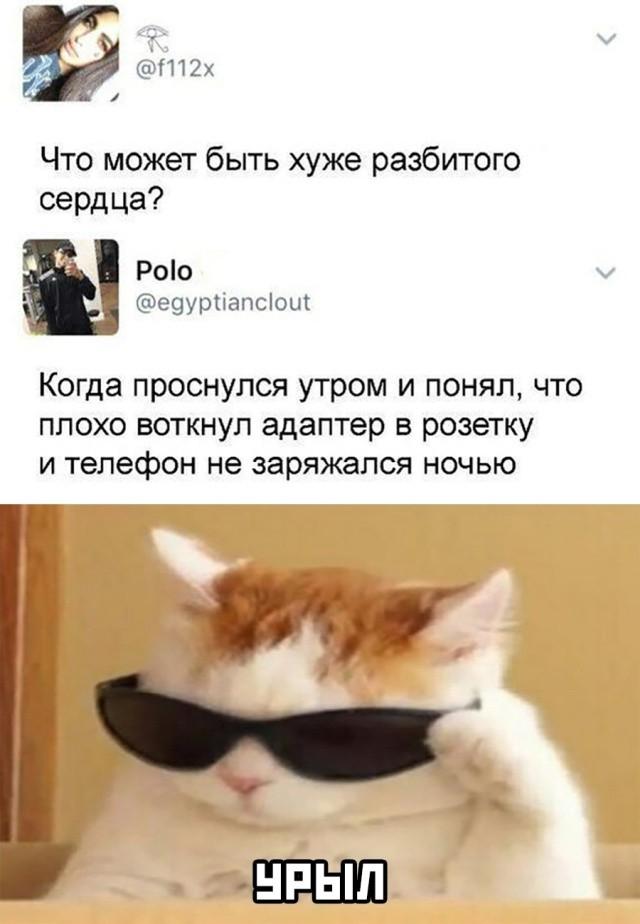 Подборка прикольных фото (63 фото) 19.08.2020