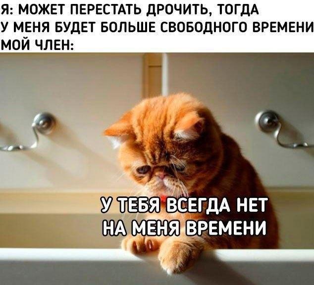 """Шутки и мемы про """"это"""" (13 фото)"""