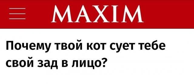 Забавные заголовки СМИ,показывают уровень журналистики (11 фото)