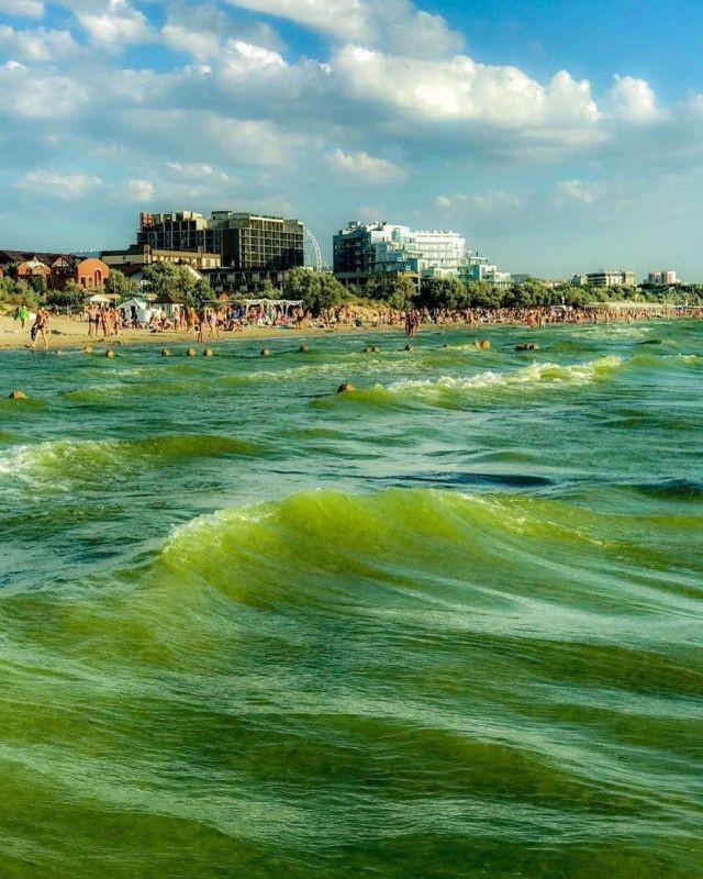 Туристы жалуются, что Черное море превратилось в зеленую кашу (4 фото)