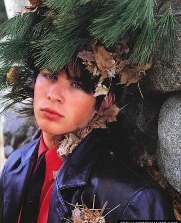 Когда деревья были большими, а знаменитости - молодыми (15 фото)