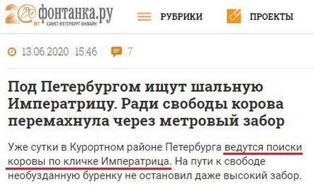 Российские СМИ и их заголовки (11 фото)