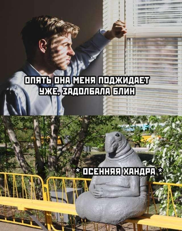 Подборка прикольных фото (66 фото) 24.08.2020