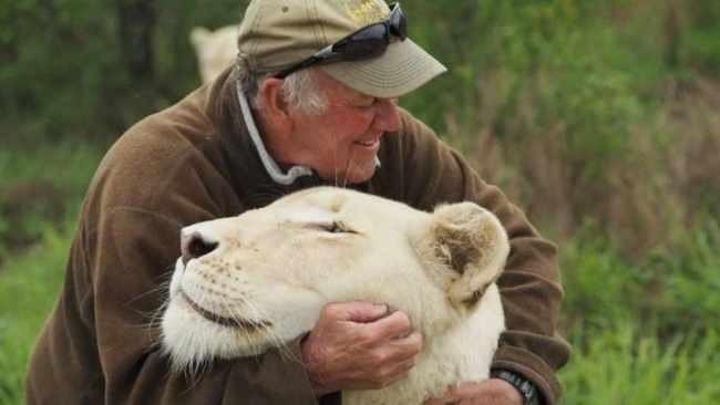 Известного защитника природы растерзали львы (4 фото)