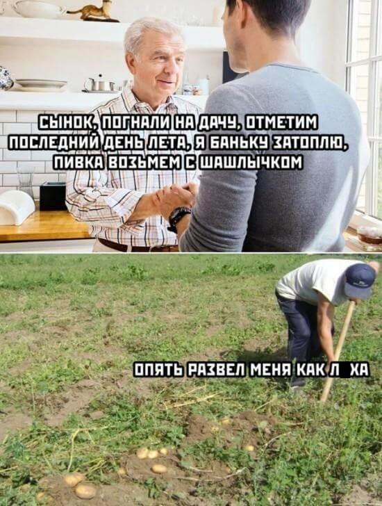 Подборка прикольных фото (62 фото) 01.09.2020