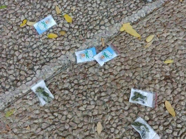 """В Тель-Авиве прошел """"марихуанный"""" дождь"""" (5 фото)"""