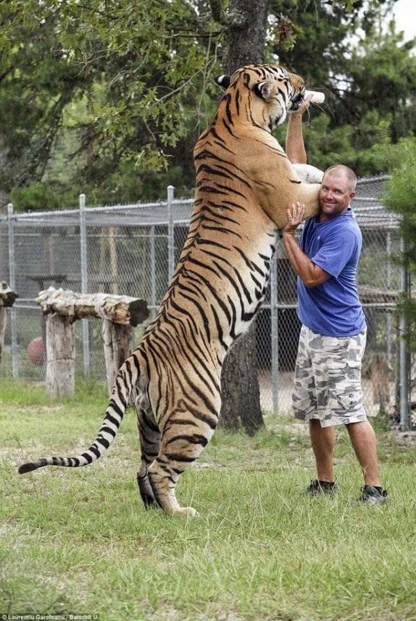 Внушительные фото-сравнения людей и животных (10 фото)