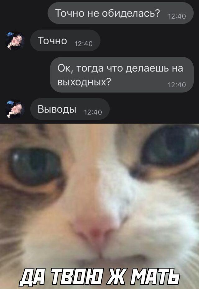 Подборка прикольных фото (31 фото) 14.09.2020