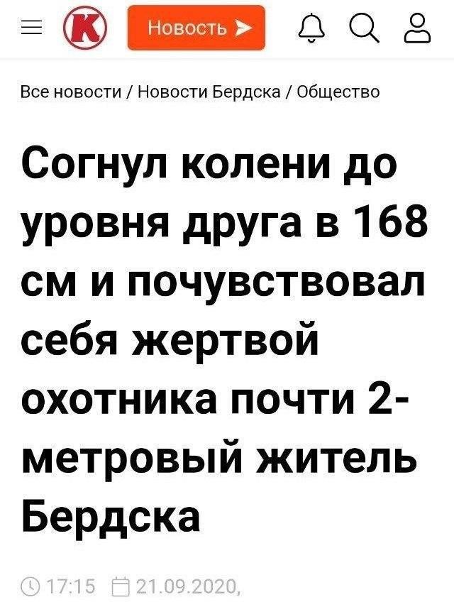 Непонятные и абсурдные предложения из российских СМИ (10 фото)