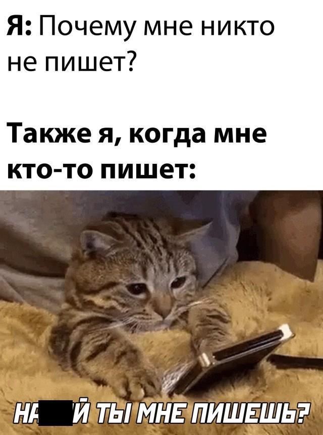 Подборка прикольных картинок 14.10.2020 (30 фото)