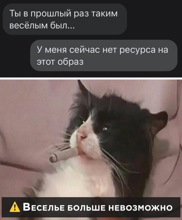 Подборка прикольных картинок 16.10.2020 (30 фото)