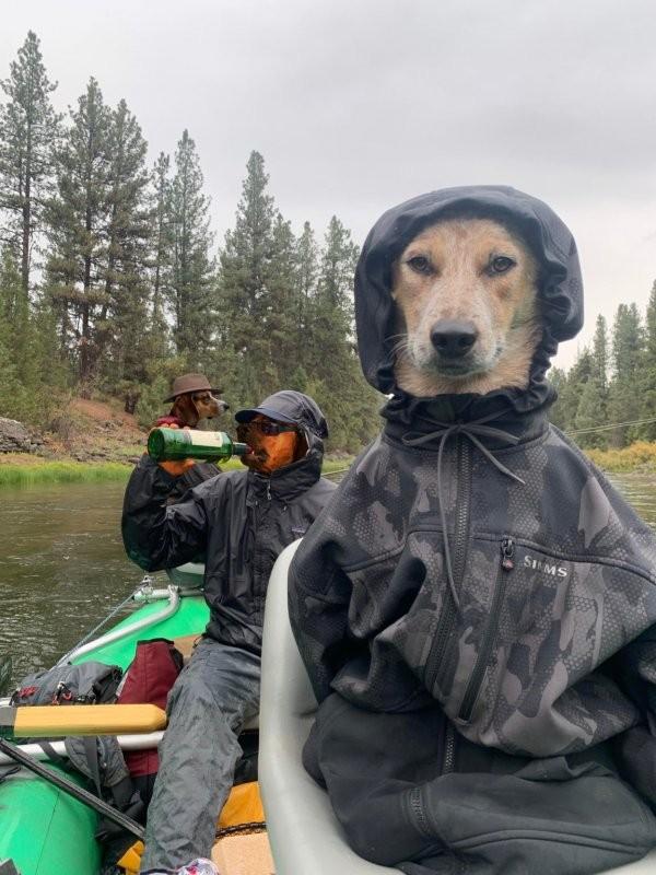 Фотография с собакой в куртке и пьющими рыбаками, вдохновила пользователей на новый фотошоп-баттл (13 фото)