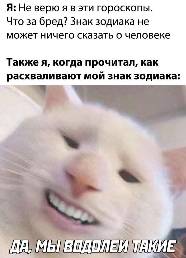 Подборка прикольных фото (30 фото) 26.10.2020