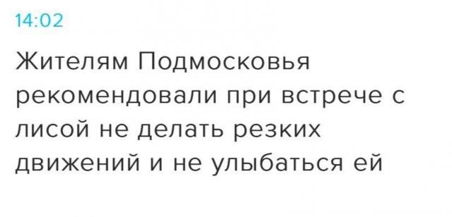 """""""Шикарные"""" заголовки из СМИ (15 фото)"""