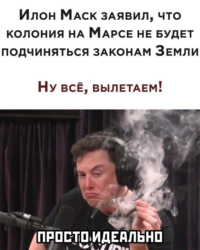 Подборка прикольных фото (30 фото) 04.11.2020