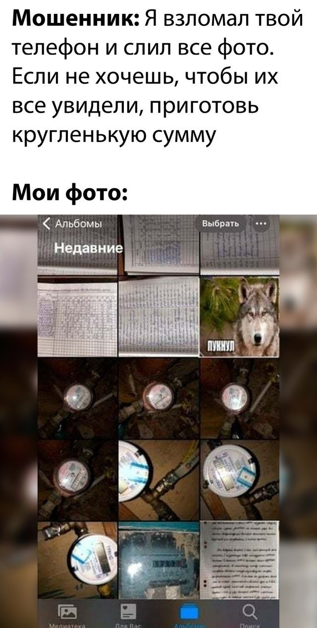 Подборка прикольных фото (30 фото) 06.11.2020