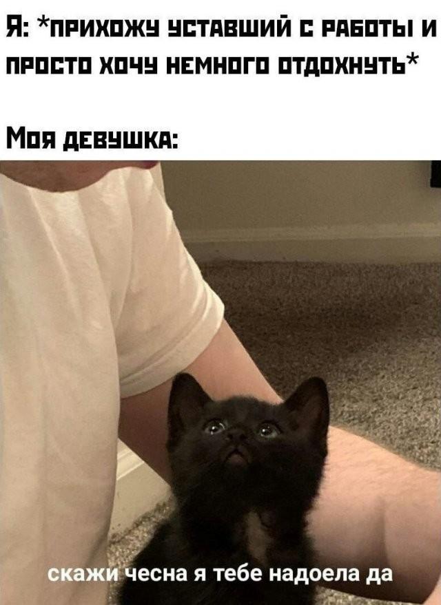 Немного странного и черного юмора (15 фото)