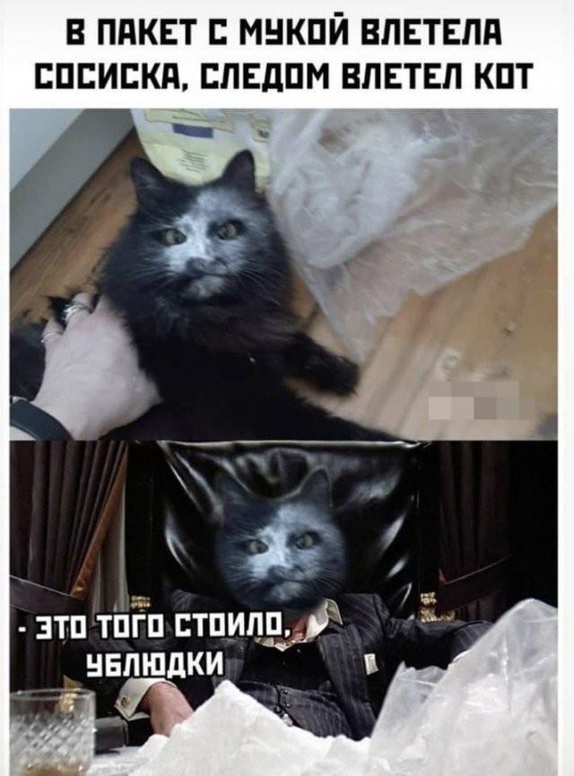 Мемы и шутки из Сети (16 фото)