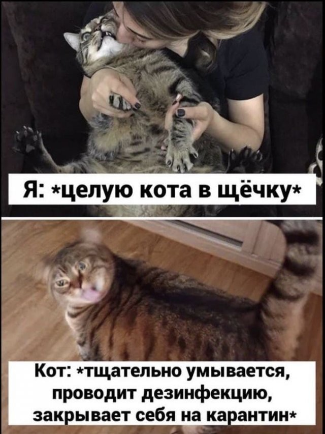 Мемы и картинки о коронавирусе (12 фото)