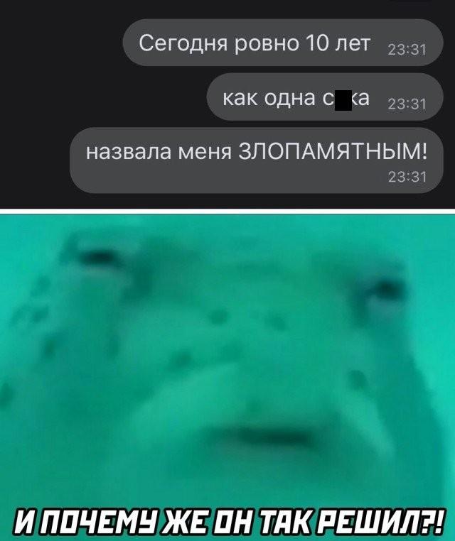 Подборка прикольных фото (30 фото) 27.11.2020