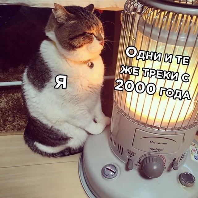 Подборка прикольных фото (30 фото) 04.12.2020