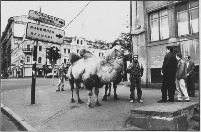Винегрет исторических фото прошлого (15 фото)