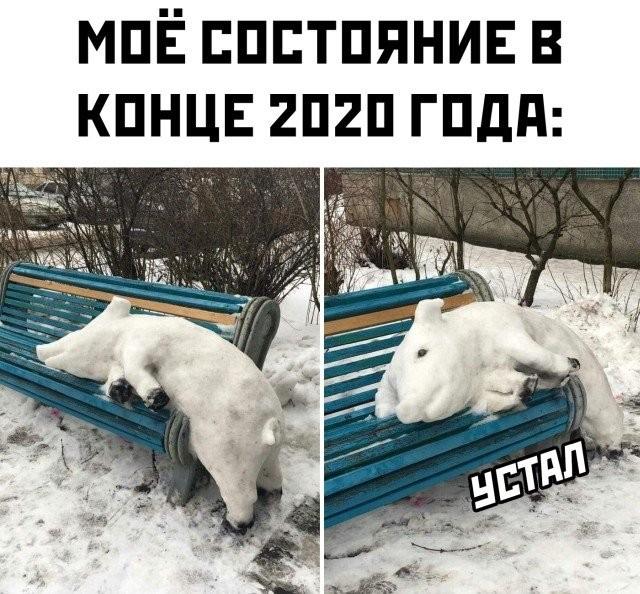 Подборка прикольных фото (30 фото) 21.12.2020