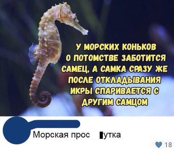 """Приколы про """"яжматерей"""", детей и семейные отношения (15 фото)"""