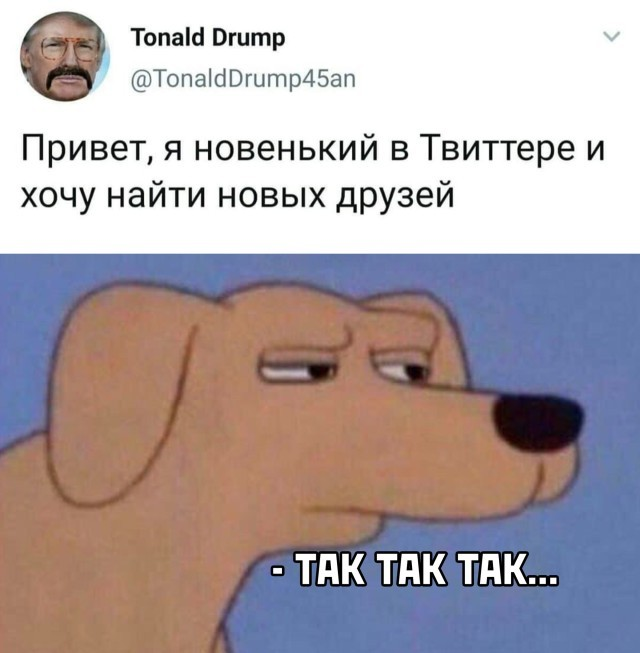 Подборка прикольных фото (30 фото) 12.01.2021