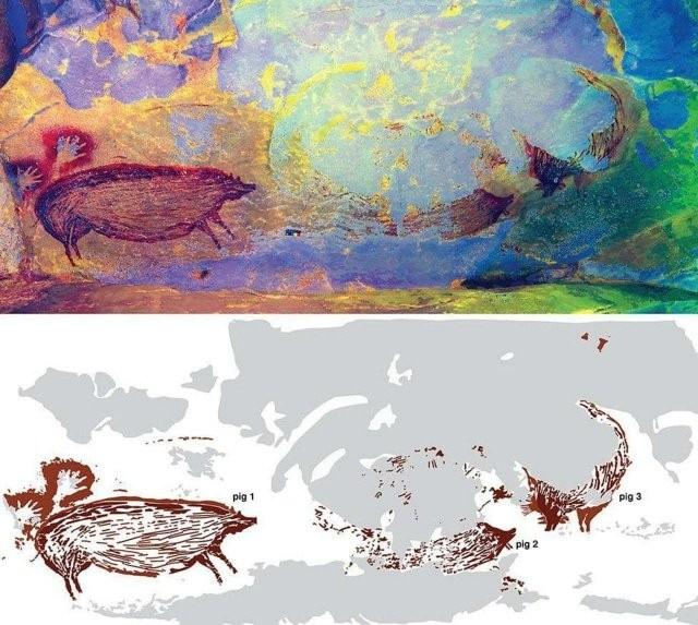 Древнейшие наскальные рисунки свиней обнаружены в Индонезии (3 фото)